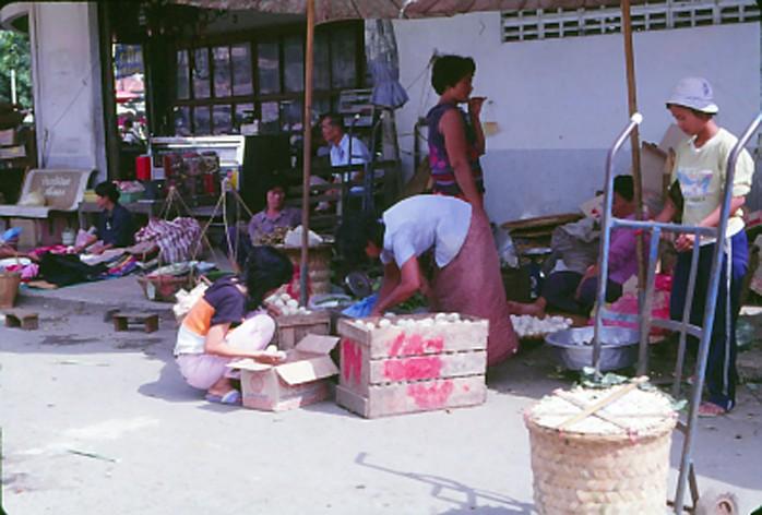 การปรับตัวต่อสภาพเศรษฐกิจและสังคมที่เปลี่ยนแปลงของลาวครั่งที่บ้านโคก จังหวัดสุพรรณบุรี โดย คนึงนุช มียะบุญ